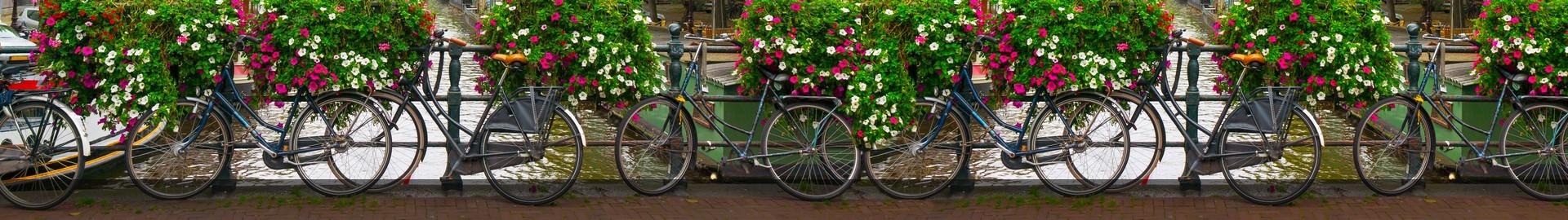 biuro tłumaczeń tłumaczenia rowery panorama
